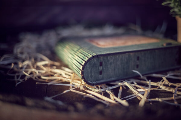 Cutie din lemn medie pentru stick USB - model Leagan in padure