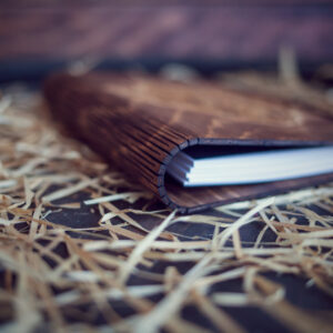 Agenda din lemn - model Bufnita